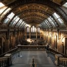 6 of London's Most Unique Must-See Museums